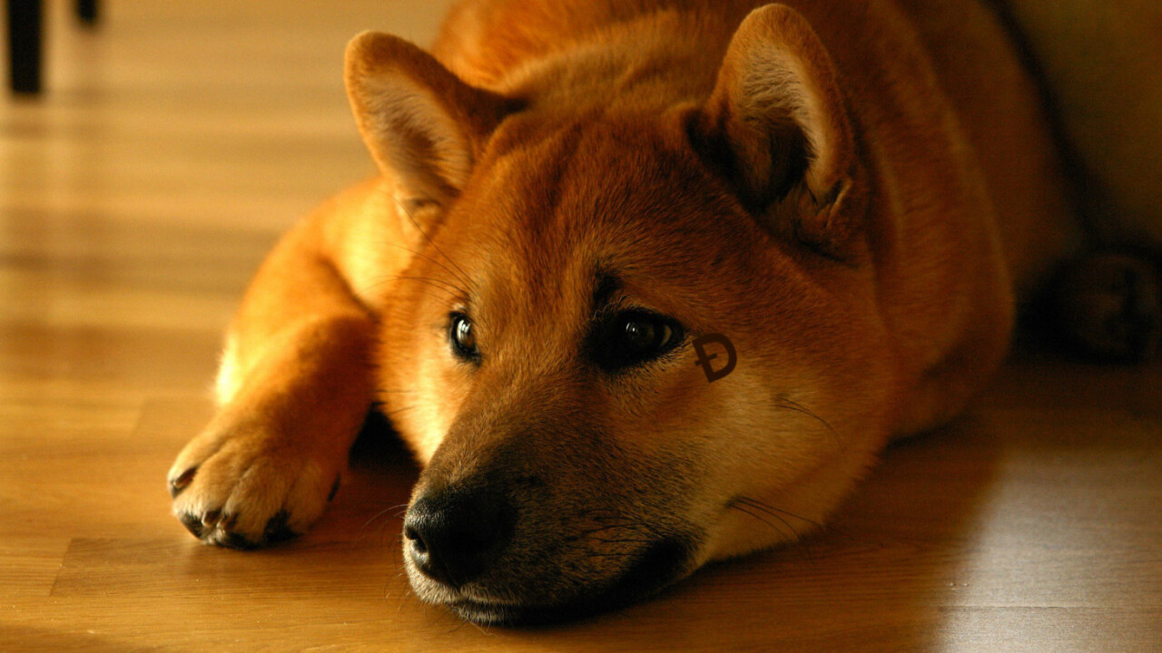 Analysts track cryptocurrency scammer who stole from 10K Dogecoin fans