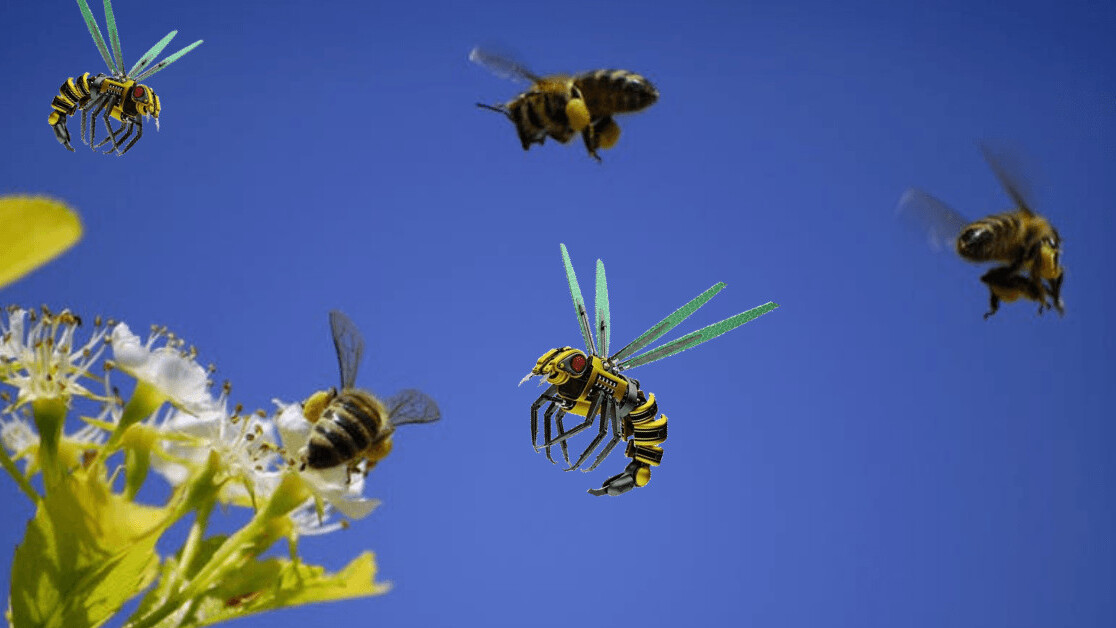 What smart bees can teach us about collective intelligence