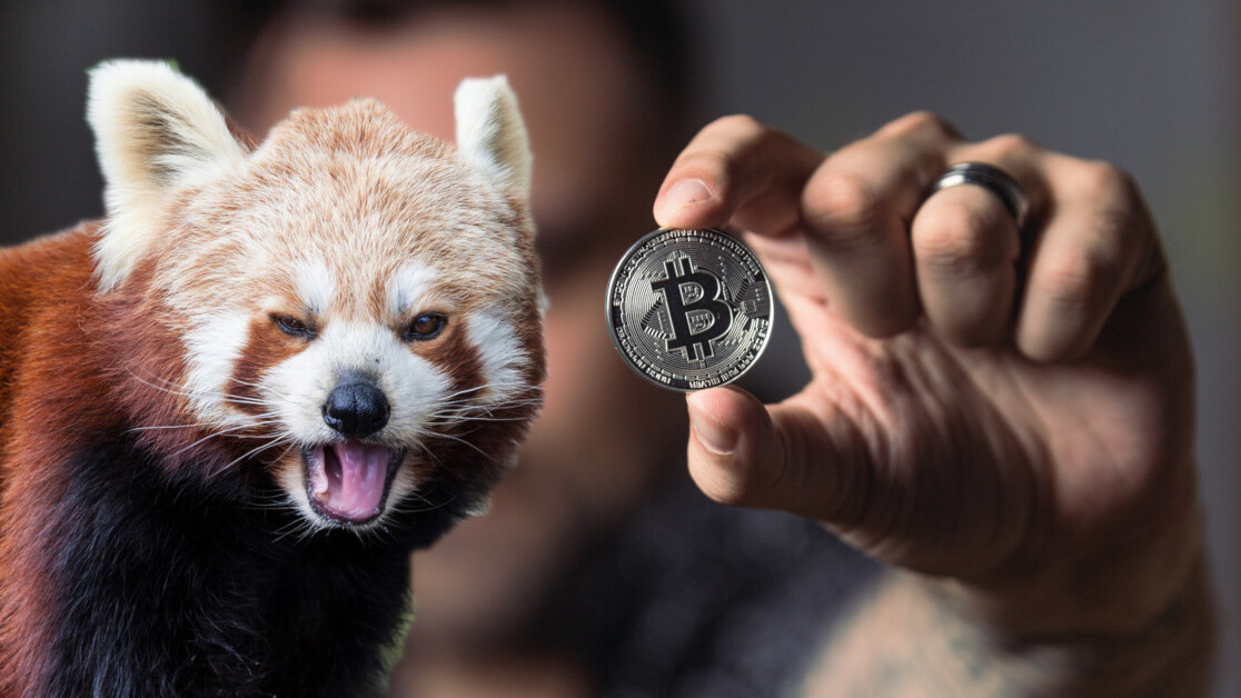 Welcome to the longest Bitcoin bear market in history