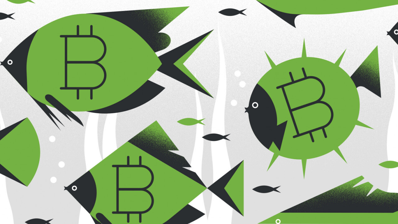 A deep dive into Bitcoin – and what makes it better than 'real money'