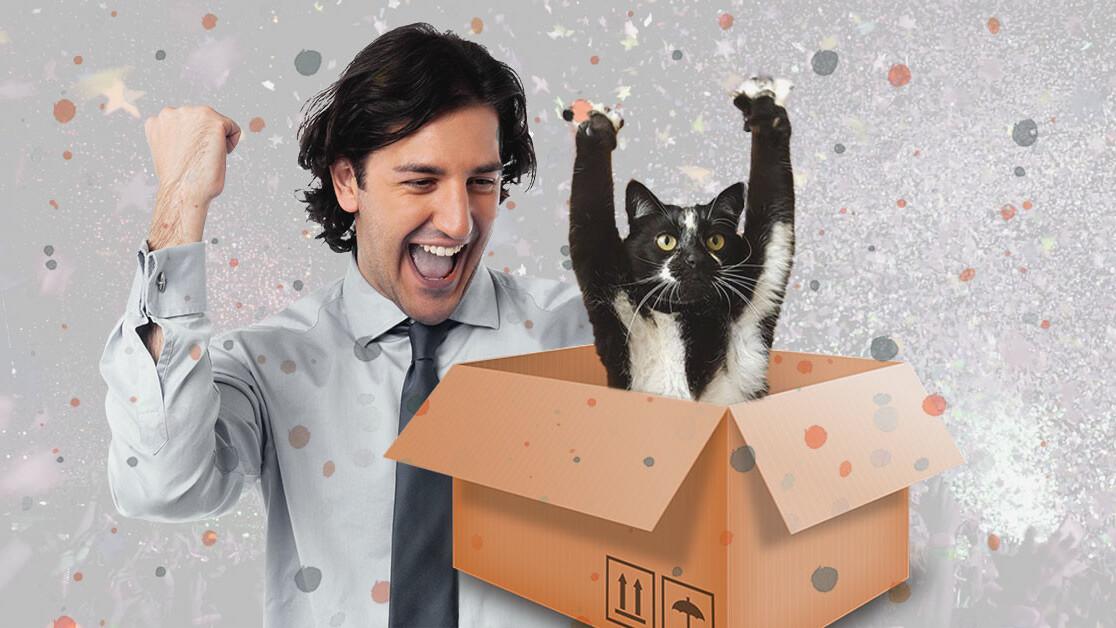 Physics breakthrough should solve quantum computing's dead cat problem