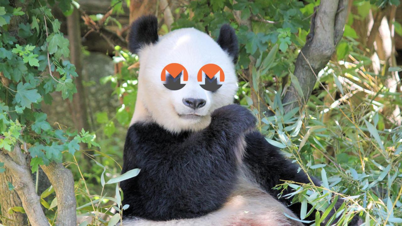 Meet Panda, an illicit cryptocurrency mining crew terrorizing organizations worldwide