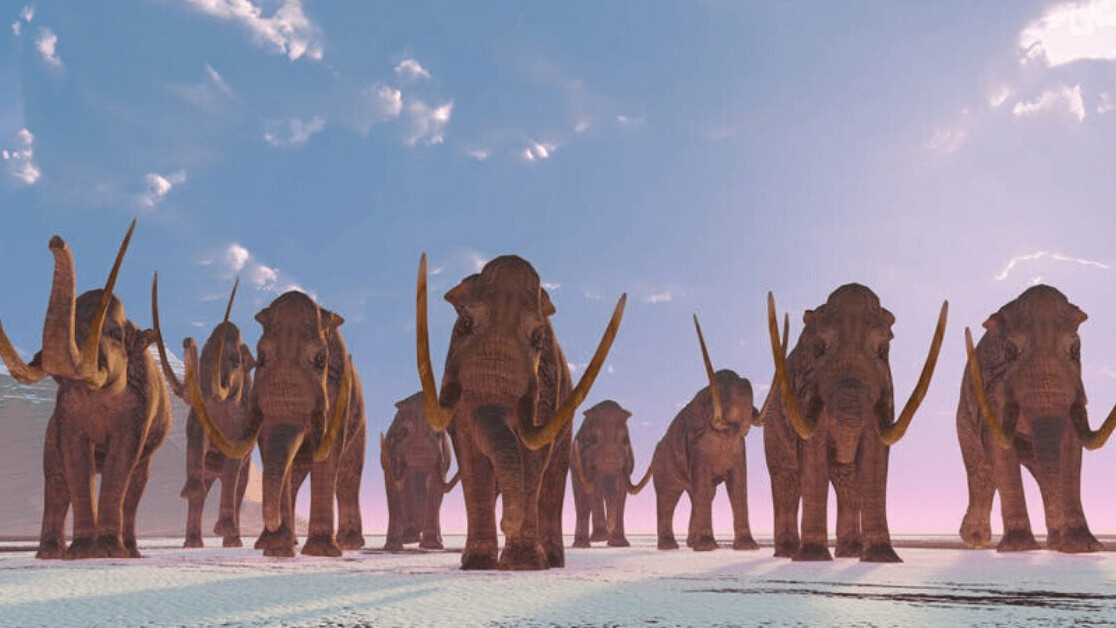 Radar reveals very first footprints of Ice Age mammoths and prehistoric humans