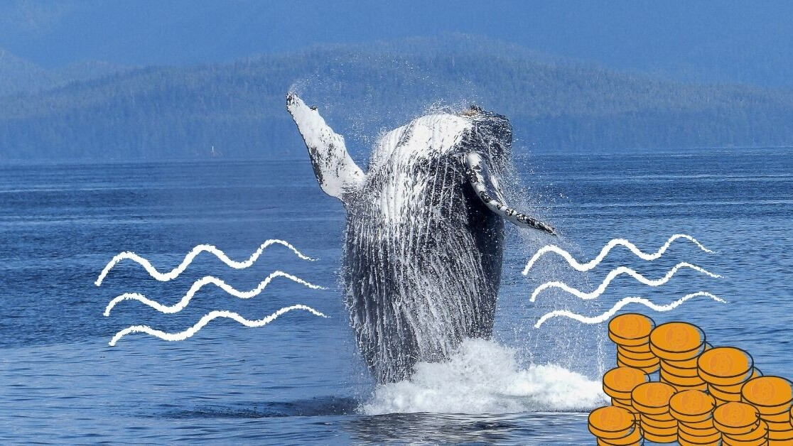 Bitcoin whale moves ball busting $1.1B for just $83