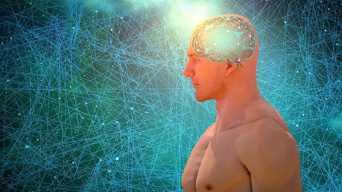 Research: Artificial neural networks are more similar to the brain than we thought