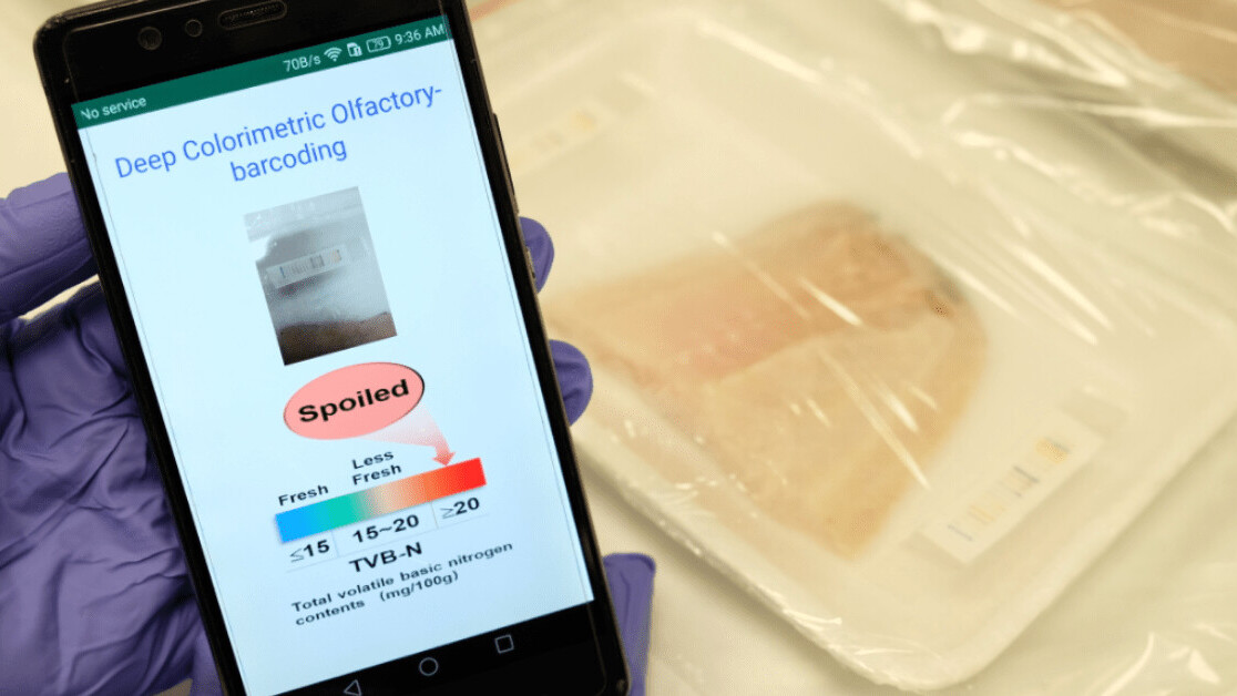 This AI-powered 'electronic nose' can sniff out rotten meat