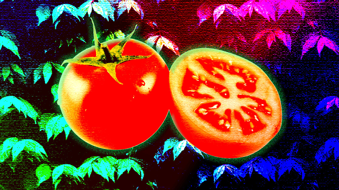 What the hell is the Pomodoro Technique and why is it good for productivity?