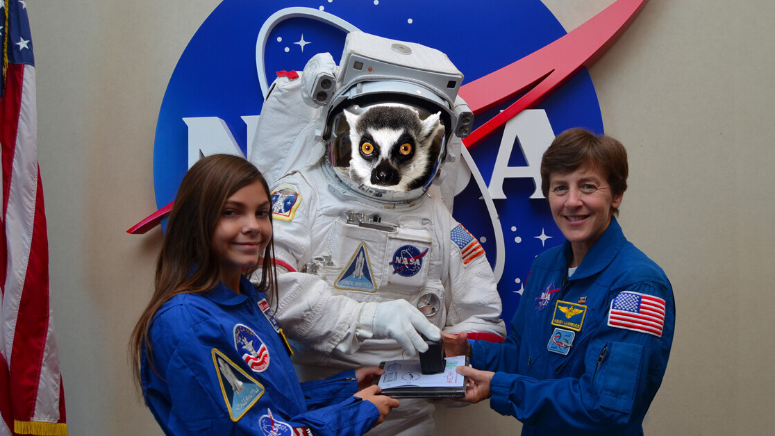 Lemurs might hold the key to human hibernation necessary for Mars missions