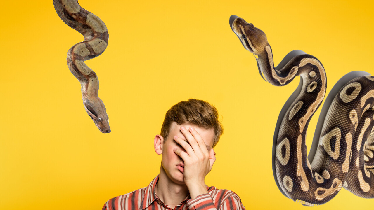Python errors? You probably made one of these silly mistakes