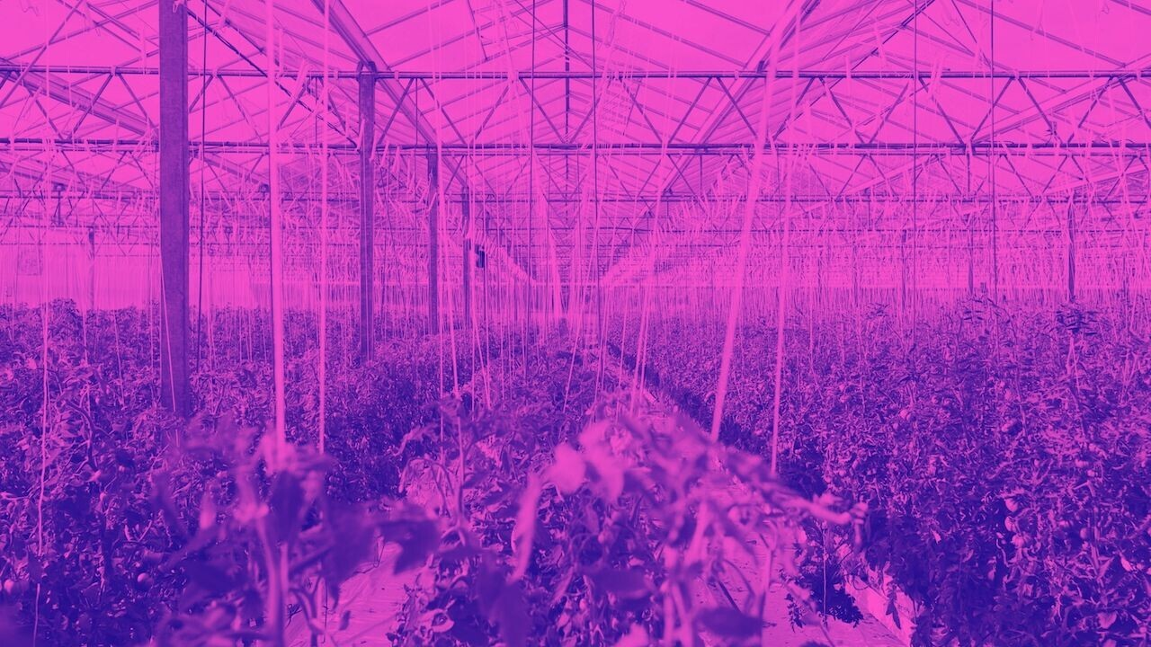 3 simple (but difficult) steps to grow your startup ecosystem