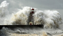 Wild waves: 14 photos of the ocean overtaking the Earth Featured Image