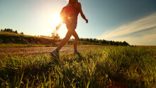 Take a hike: How walking doubles your creativity Featured Image