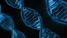 New CRISPR tool could eradicate viral diseases with long-range DNA shredding