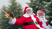 Hate Christmas? Here's a scientific survival guide for the Scrooges