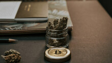 Silk Road weed dealer fights Vancouver police over $2.6M in seized Bitcoin