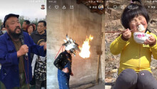 Understanding the rising popularity of China's rural influencers