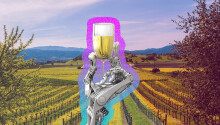What winemaking has taught me about artificial intelligence