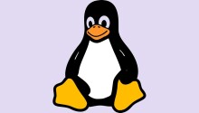 Linux kernel will no longer use terms 'blacklist' and 'slave'