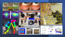 New to computer vision and medical imaging? Start with these 10 projects