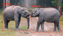 Here's how deep learning helps computers detect objects Featured Image