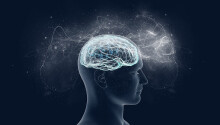 New research tries to explain consciousness with… quantum physics Featured Image