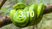 How to use the coolest new features in Python 3.10