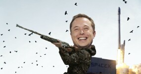SpaceX's success is built on the bones of tiny birds