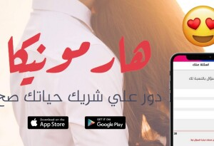 This Egyptian matchmaking app is made for the conservative Arab world