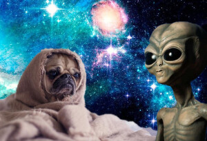 Here's 3 sad science news stories to ruin your day (because it's still 2020)