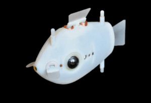 Swarms of robot fish could soon monitor our oceans for environmental hazards