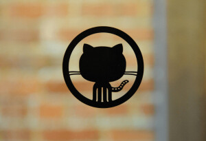 GitHub offers to rehire employee it fired for calling insurrectionists 'Nazis'