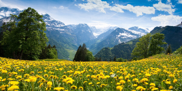 An inside look at Switzerland's seriously ambitious startup scene