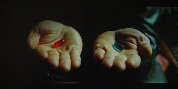 10 lessons I learned by taking the entrepreneurial Red Pill