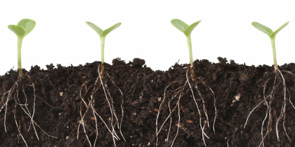 Explained: The actual difference between growth hacking and marketing