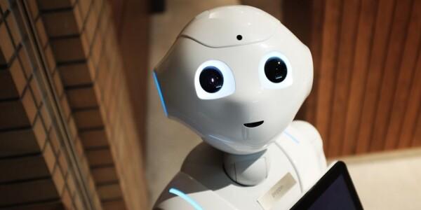 Meet Israel's next top robots