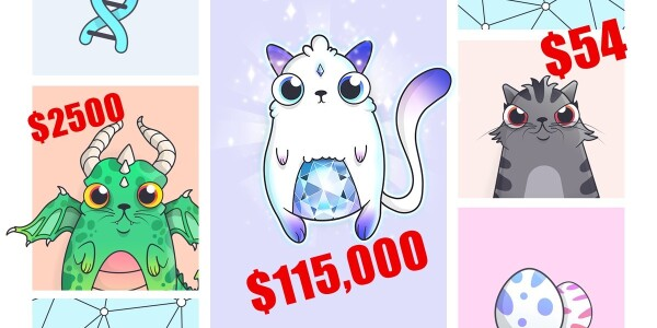 Crypto Kitties is a perfect example of why the blockchain matters