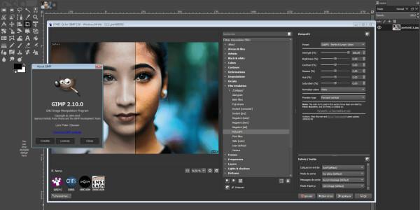 Developer forks GIMP image editor over naughty name