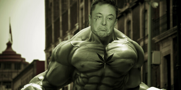 Elon Musk bought $45M in Tesla stock since 'that weed joke' — now it's worth double