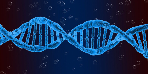 How CRISPR is tackling the troubling immune response that's plagued gene therapy until now