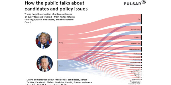 What audience intelligence data tells us about the 2020 US presidential election