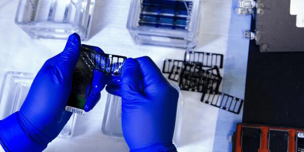 Engineer explains how Nobel Prize-winning CRISPR technique works
