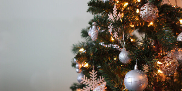 How to check your Christmas tree's carbon footprint