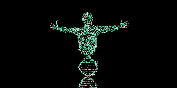 People with Y chromosomes have shorter lifespans thanks to 'toxic' DNA