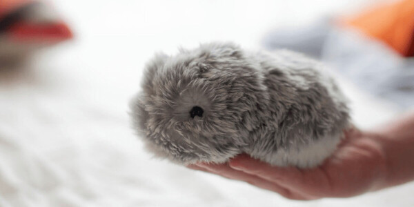 This cute AI pet will fill the deep, dark void in your life