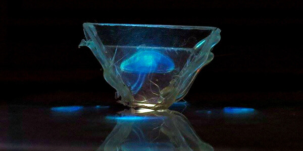 Quantum physics has the answer to making better holograms