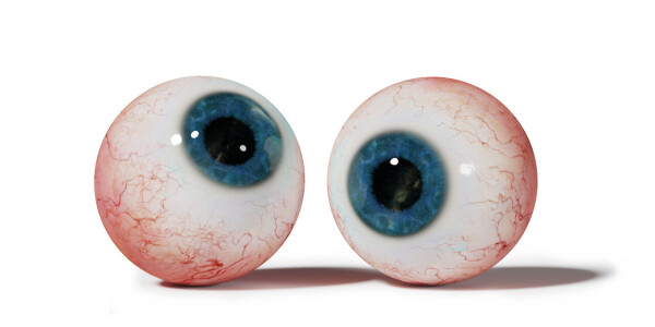 What's the difference between human eyes and computer vision?