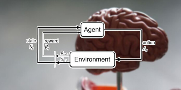 DeepMind researchers say reinforcement learning is the key to cracking general AI