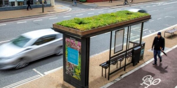 Leicester installs bee-friendly bus stops