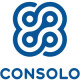 Consolo Services Group