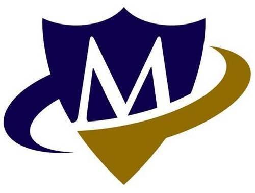 Mosaic Insurance